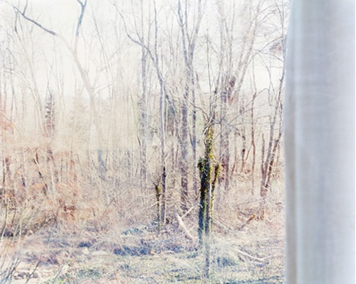 Linda Pagani's Ethereal Landscape Photo At Webster & Co