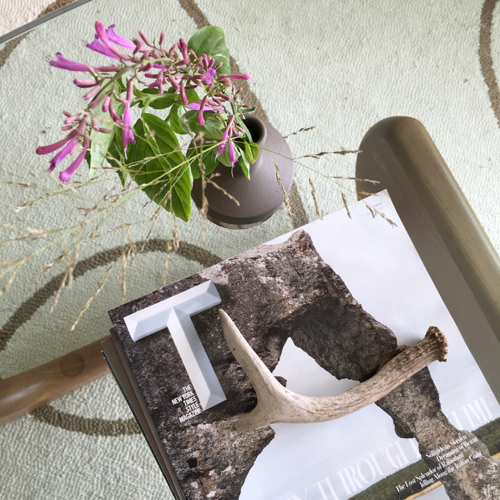 Flowers With Antler On Noguchi Table