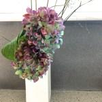 Sunday Bouquet: Dried But Not Forgotten