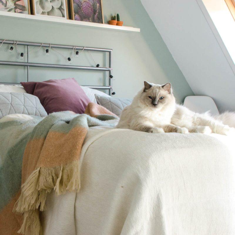plaid slaapkamer