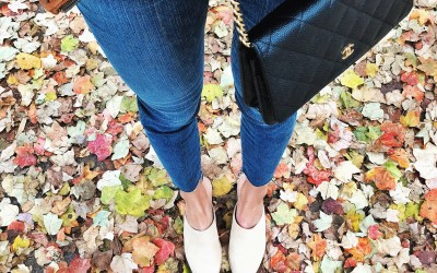 Joie mules with chanel woc