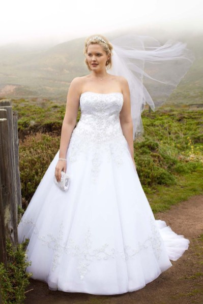 50 Ball Gown for Pluz Size Brides Ideas 20