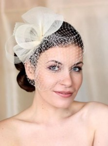 50 Blusher Veils and Bridcage for Brides Ideas 35