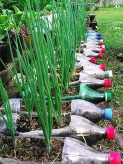 50 Ways to Reuse Plastic Bottles to Cute Planters Ideas 36