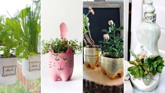 50 Ways to Reuse Plastic Bottles to Cute Planters Ideas