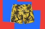15 Best Swim Trunks Under $100 for Summer