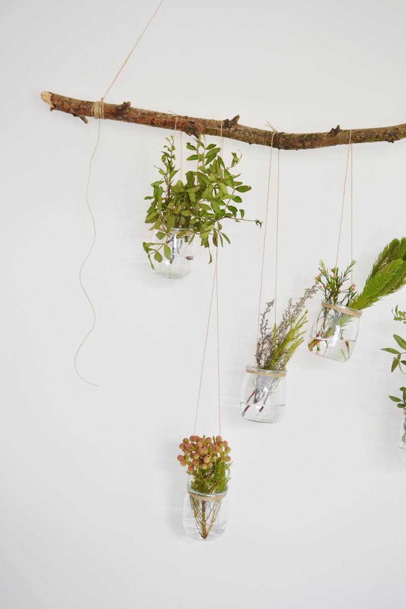 plantas-colgantes9