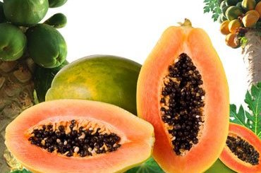 Benefits of Papaya for health.