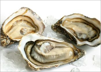 Oysters Good For Hair Growth