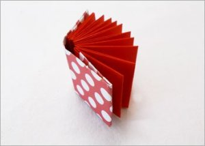 Origami-book-for-school-project