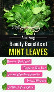 Benefits-of-mint-leaves