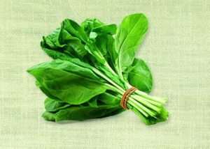 Spinach-energy-boosting-foods