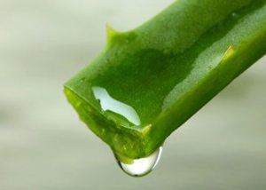 Aloevera-home-remedies-for-wrinkles-on-face