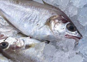 Fish-foods-for-diabetics