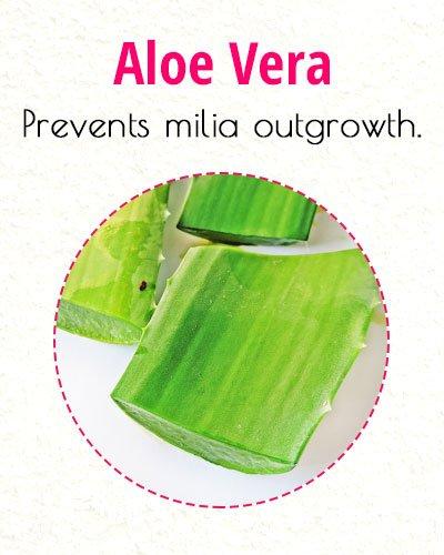 Aloe Vera To Treat Milia On Face