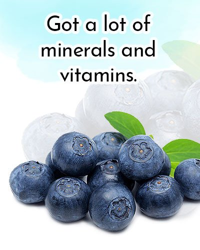 Blueberries for Antioxidants