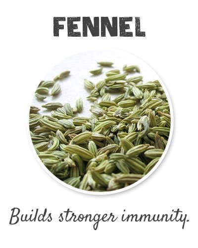 Fennel for Joint Pain
