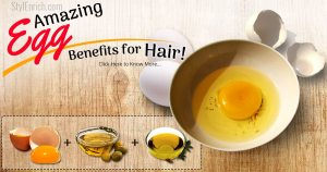Amazing egg benefits for hair