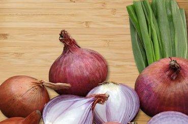 Health Benefits of Onions