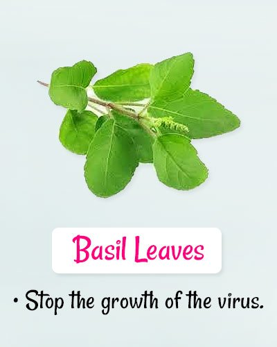 Basil Leaves For Chickenpox