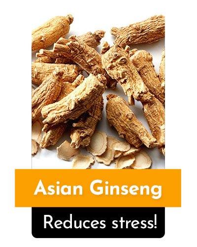 Asian Ginseng Herb For Energy