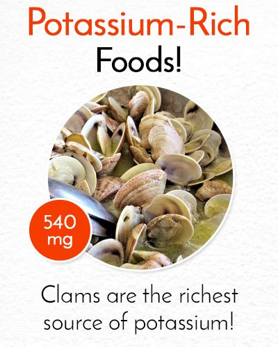 Potassium Rich Clams