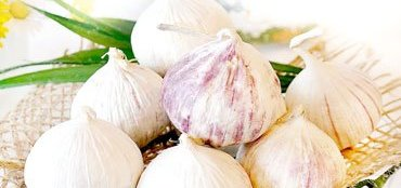 Health Values Of Having Garlic