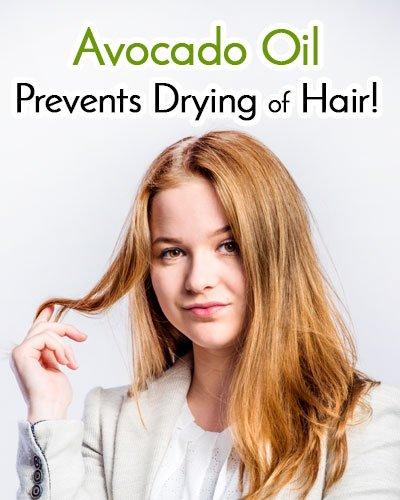 Avocado Oil Prevents Drying Of Hair