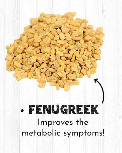 Fenugreek For Diabetics