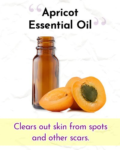 Apricot Essential Oil For Wrinkles