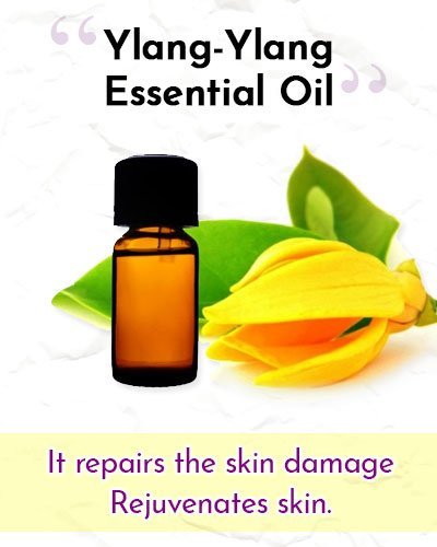 Ylang Ylang Essential Oil For Wrinkles