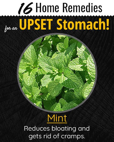 Mint For Upset Stomach