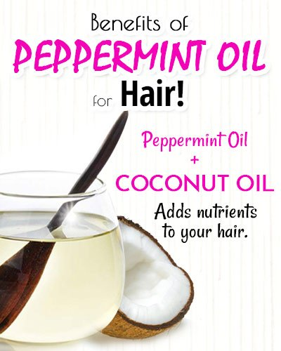 Peppermint and Coconut Oil for Hair