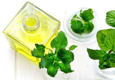 Benefits Of Peppermint Oil For Hair