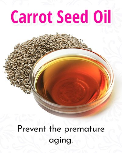Carrot Seed Facial Oils Mask Recipe