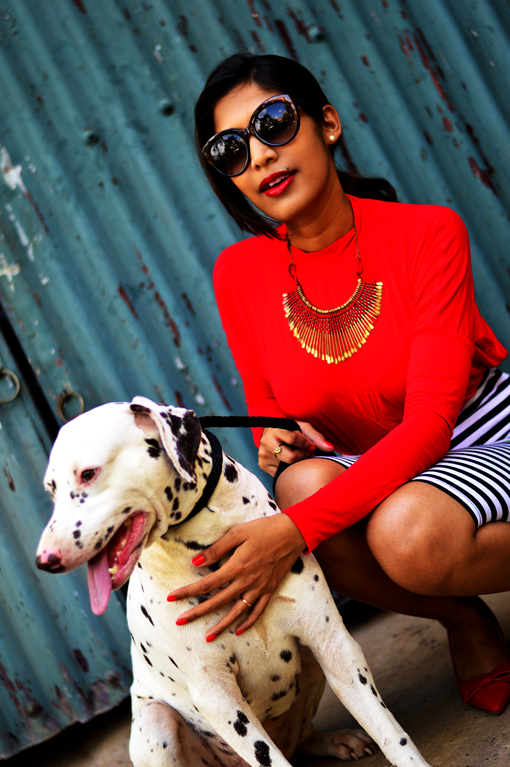 Fashion, Style, Fashion photography, Street Style, Fashion Blogger, Striped Pencil Skirt, Fashion Photo with animals, Red Blouse-3