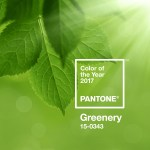 Pantone Color of the year, Fashion, Style, Indian Fashion Blogger, Shopping, Color Trend