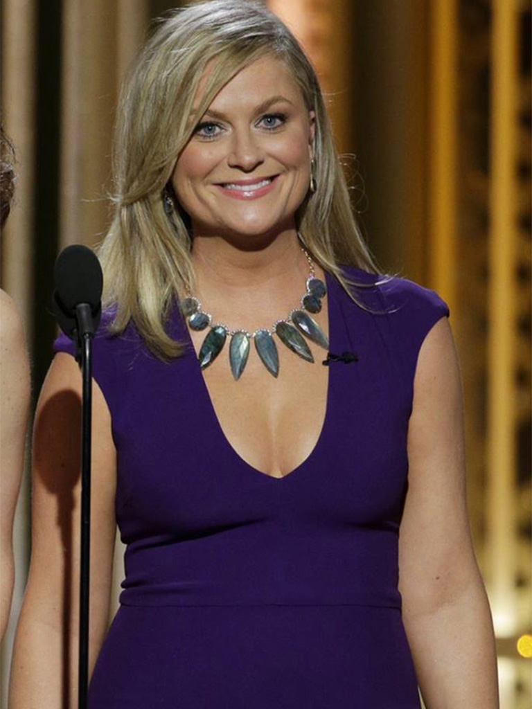 2015 Amy-Poehler-wears-Irene-Neuwirth-Golden-Globes copy