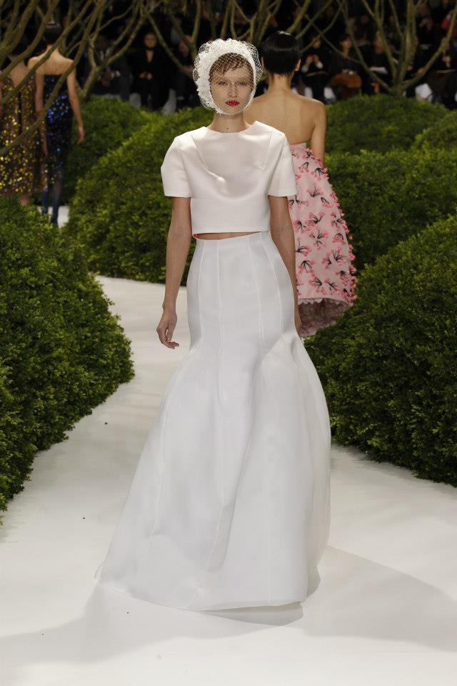 Dior Haute Couture Spring Summer 2013 Collection 2
