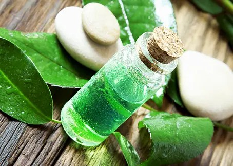How to Remove Pimple in One Day-Tree tea oil