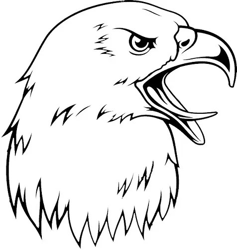 Eagle Head Tattoo Designs