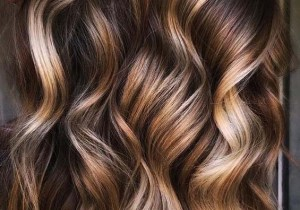 Cinnamon Creme brunette Hair Color Shades