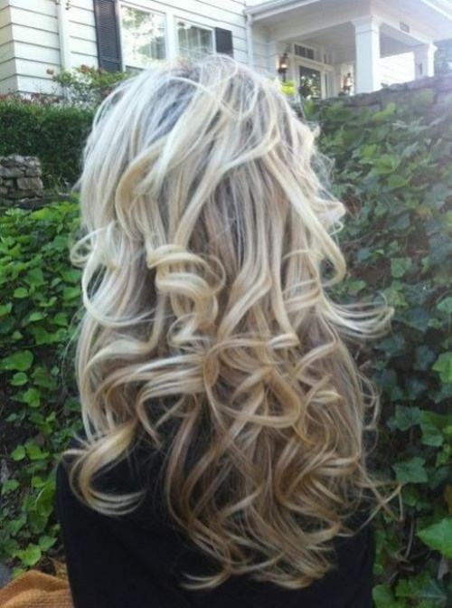 Back View of Long Soft Curly Hairstyle for Girls