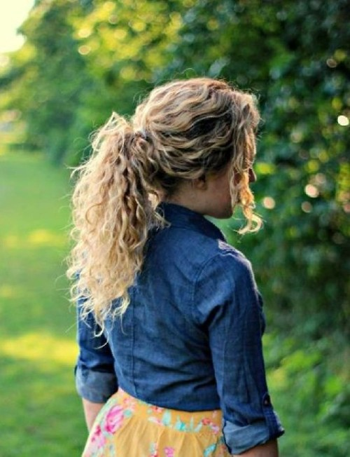 Easy Hairstyle for Curly Hair The Ponytail