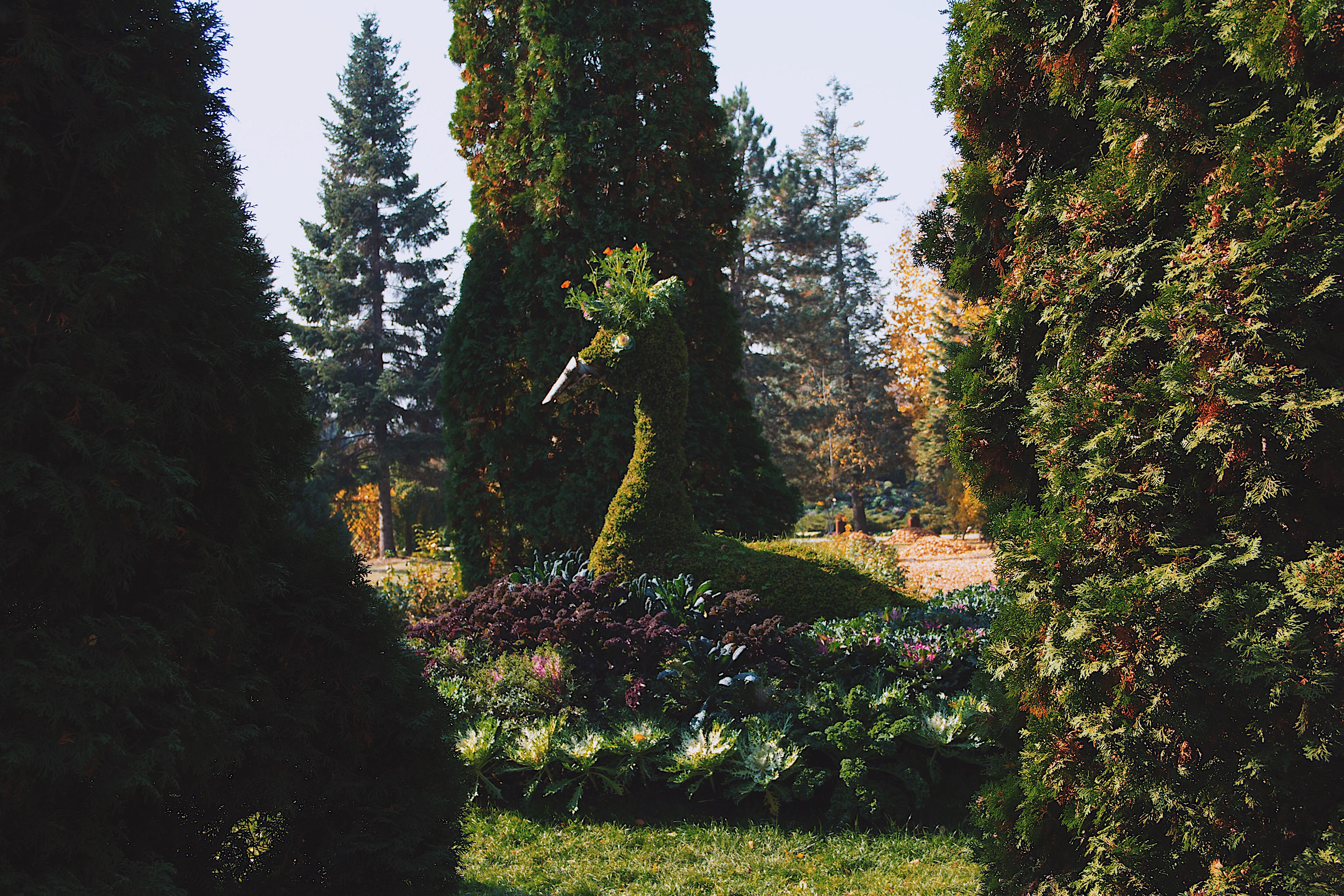 Botanical Gardens Iasi Romania Style Unsettled