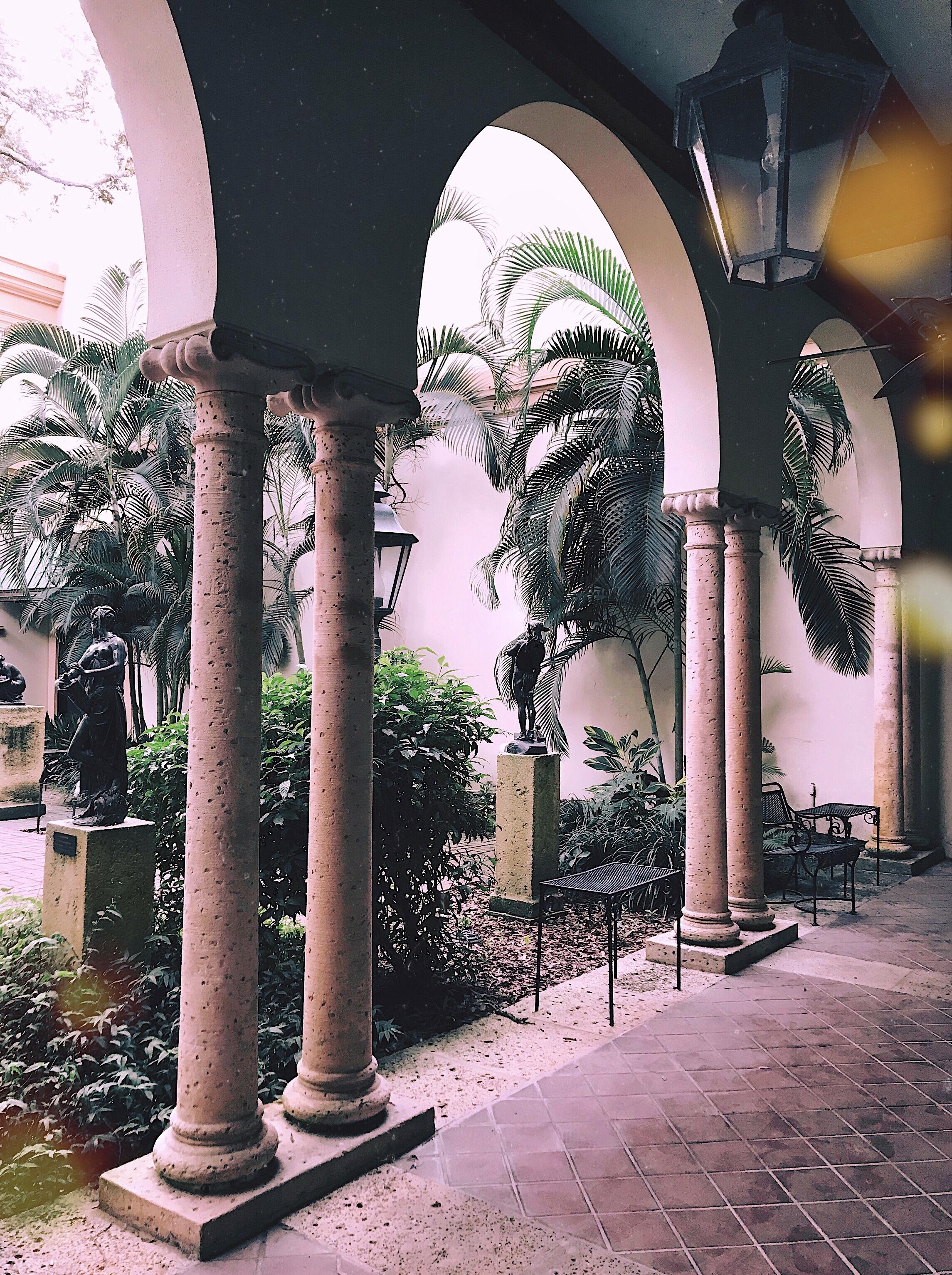Museum of Fine Arts Saint Petersburg Florida