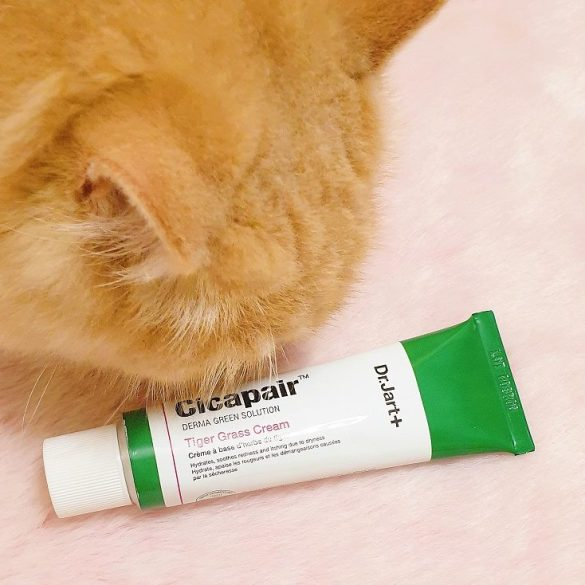 dr. jart+ cicapair tiger grass cream review with loki | style vanity