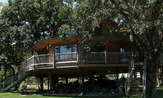 biggest tree house