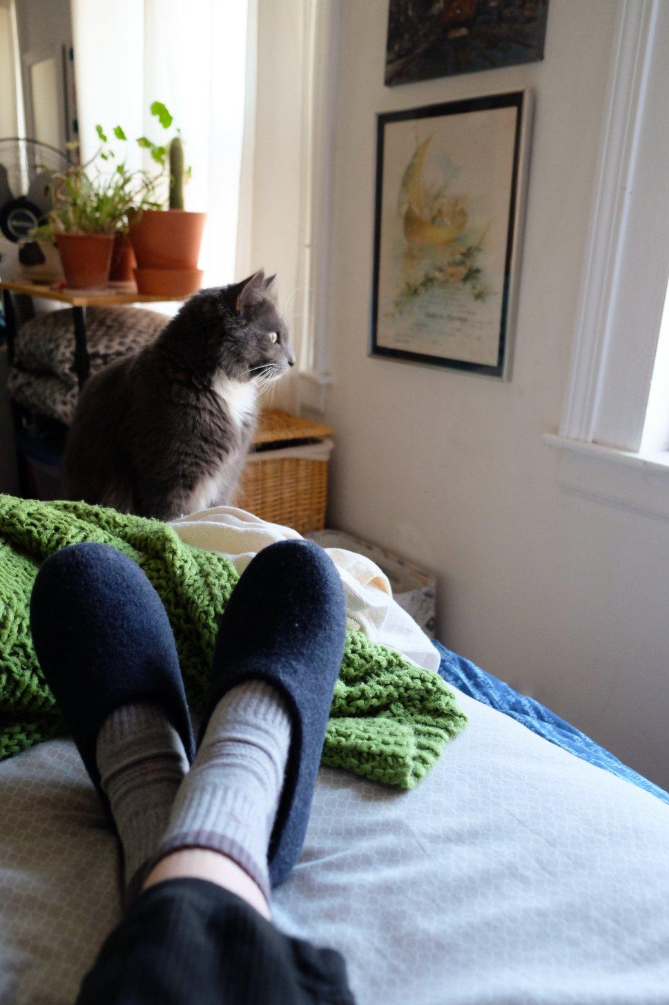 Sebastian loves to find a way into blog photos