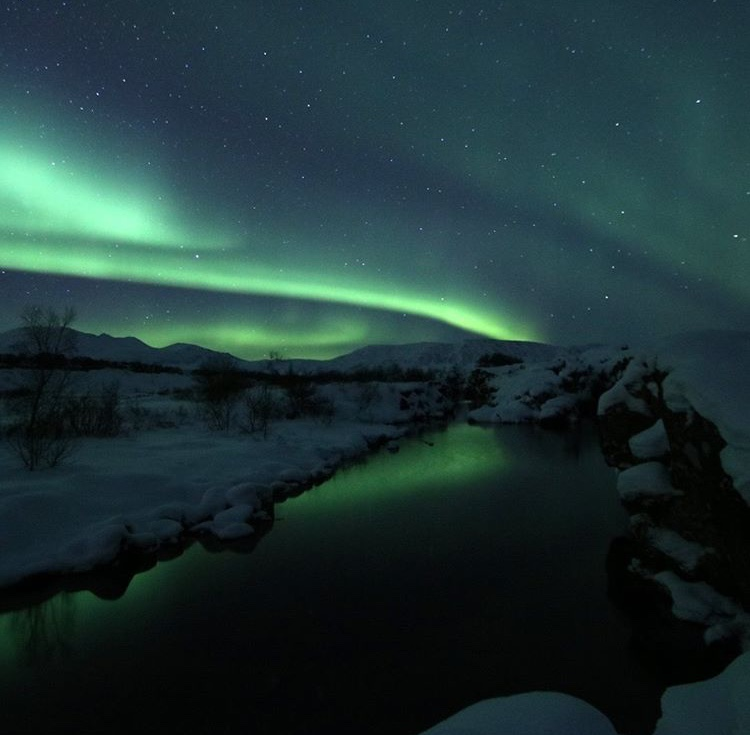 the northern lights, iceland, reykjavik, thingvallir national park